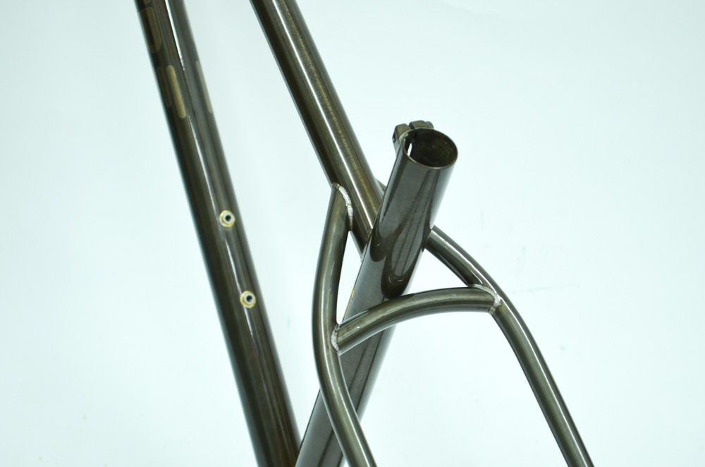 Roamer Custom Fat Bike Frame